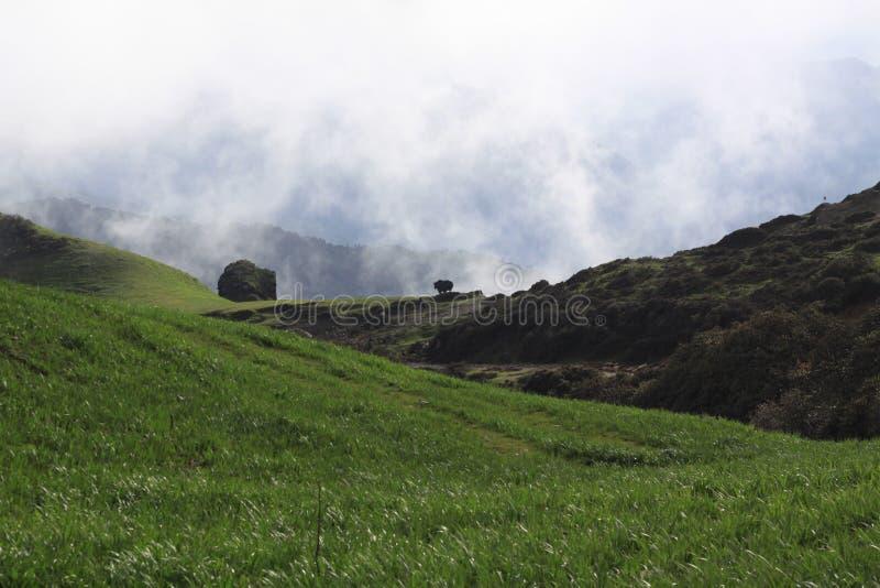 Voyage de Sandakphu image stock