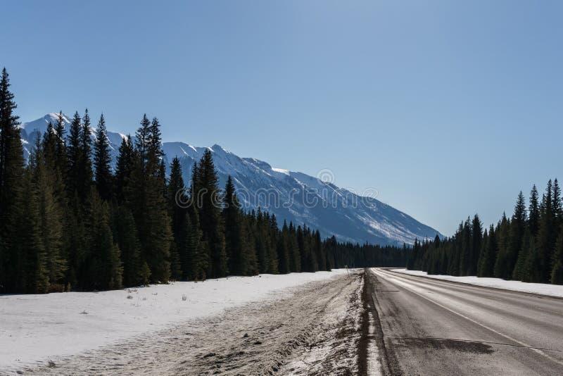 Voyage par la route dans Rocky Mountains sur banff ? la route de windermere photographie stock libre de droits