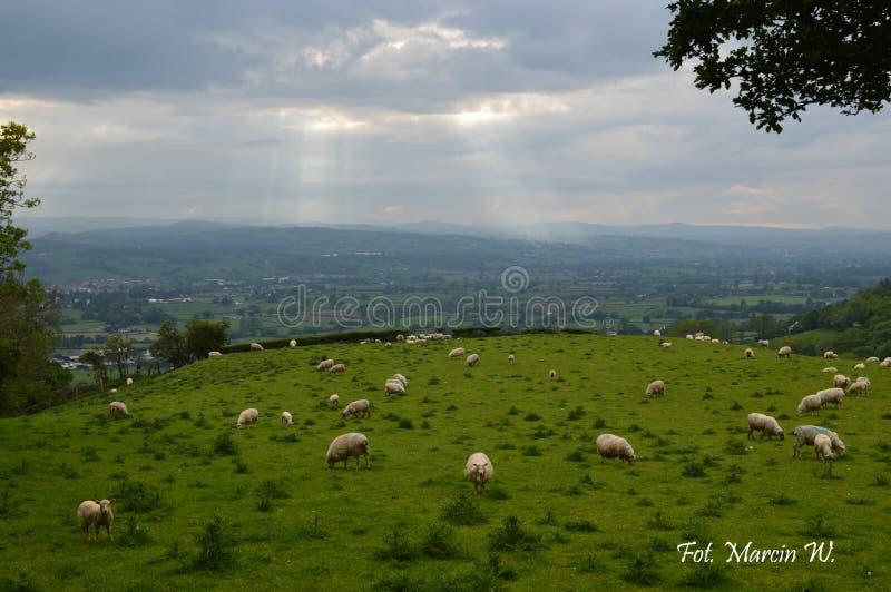 Voyage par le Pays de Galles avec l'appareil-photo photographie stock libre de droits