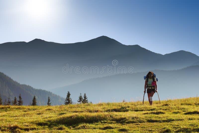 Download Voyageur photo stock. Image du métier, déménagement, nature - 8659278