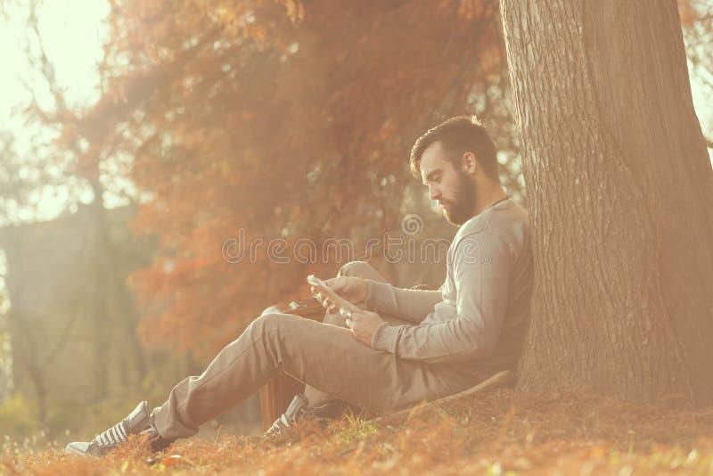 Voyageur d'automne photographie stock