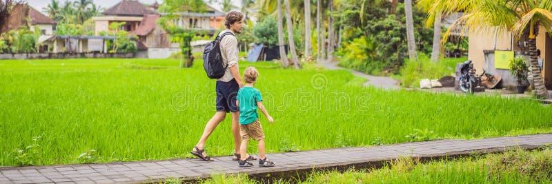 Voyageurs de papa et de fils sur de belles terrasses de riz dans la perspective des volcans célèbres dans Bali, déplacement de l' photos libres de droits