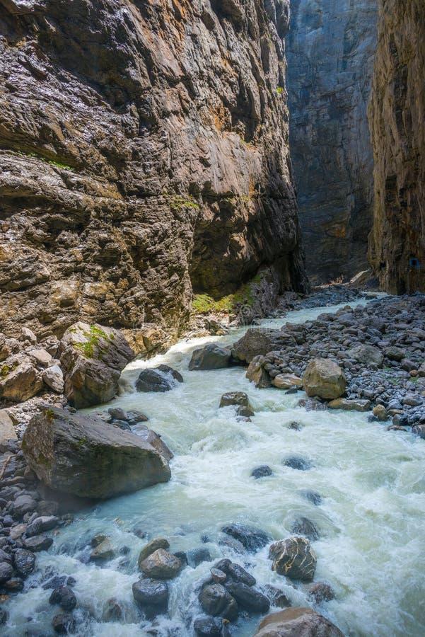 Vråla floden Lutschine i kanjon i Schweiz royaltyfria bilder