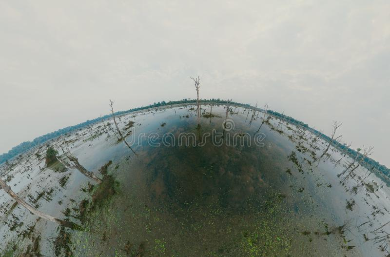 Lake with old trees sticking out of the water. 360 VR panorama drone shot. Cambodia near ancient Angkor Wat Temple Ruin royalty free stock images