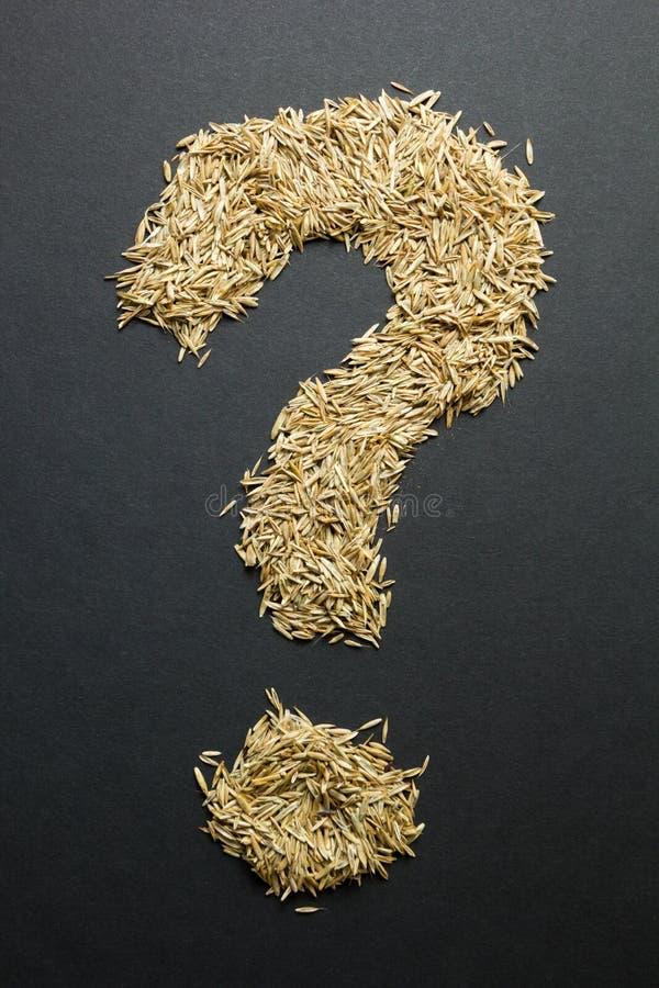 Vraagteken van graszaden op een zwarte achtergrond verticaal royalty-vrije stock afbeeldingen
