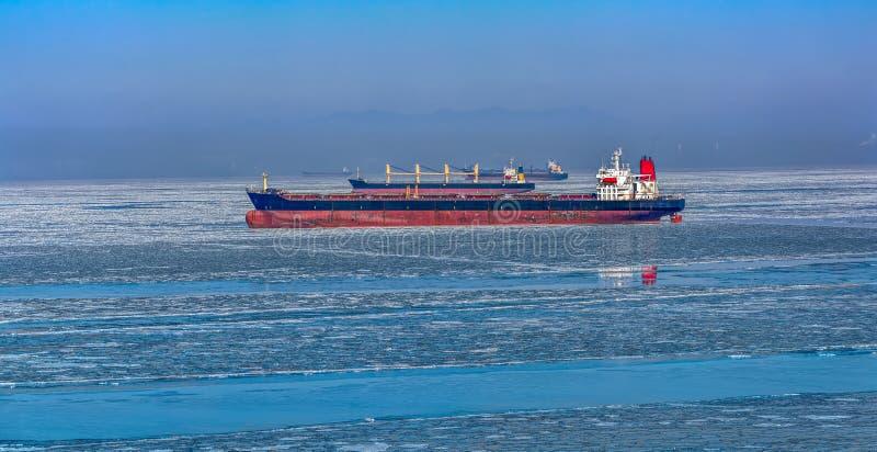 Vrachtschepen in ijs royalty-vrije stock foto