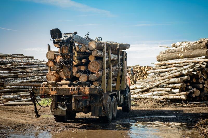 Vrachtwagen dragend hout royalty-vrije stock fotografie