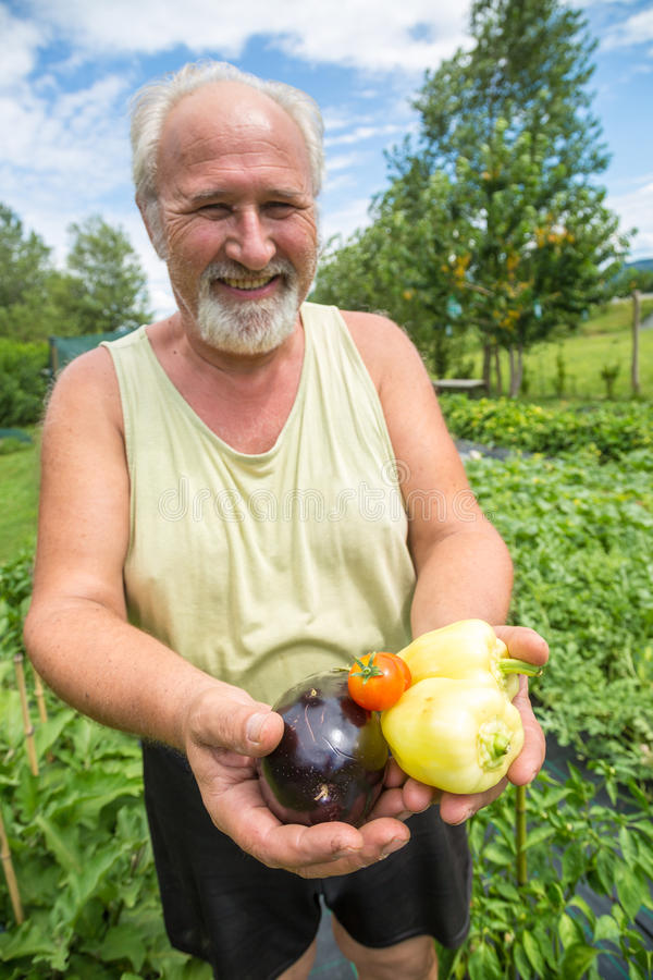 Vrai agriculteur dans son propre jardin image stock