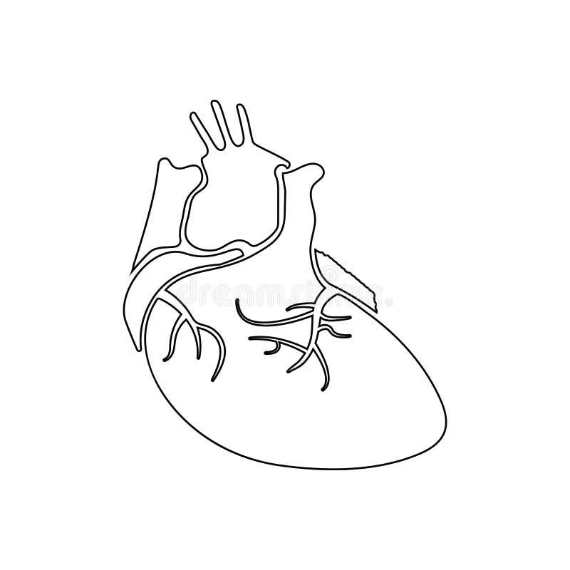 vraie image de l'icône humaine de coeur Élément des pièces humaines pour le concept et l'icône mobiles d'applis de Web Contour, l illustration libre de droits