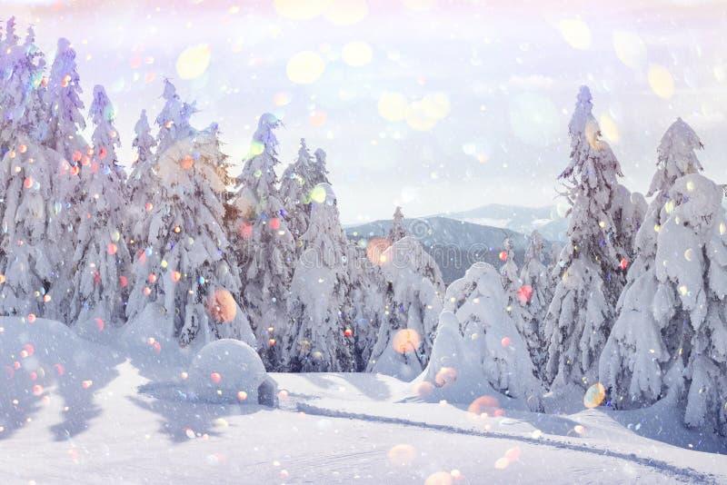 Vraie maison d'igloo de neige dans les montagnes carpathiennes d'hiver images libres de droits