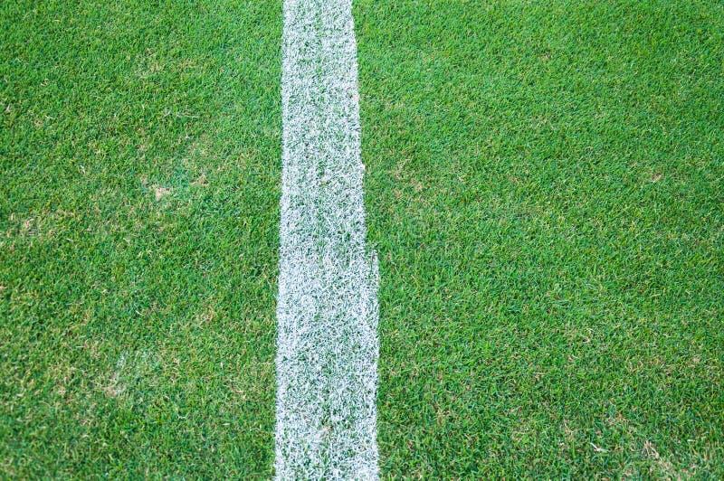 Vraie texture d'herbe verte d'un terrain de football, terrain de football extérieur photos libres de droits