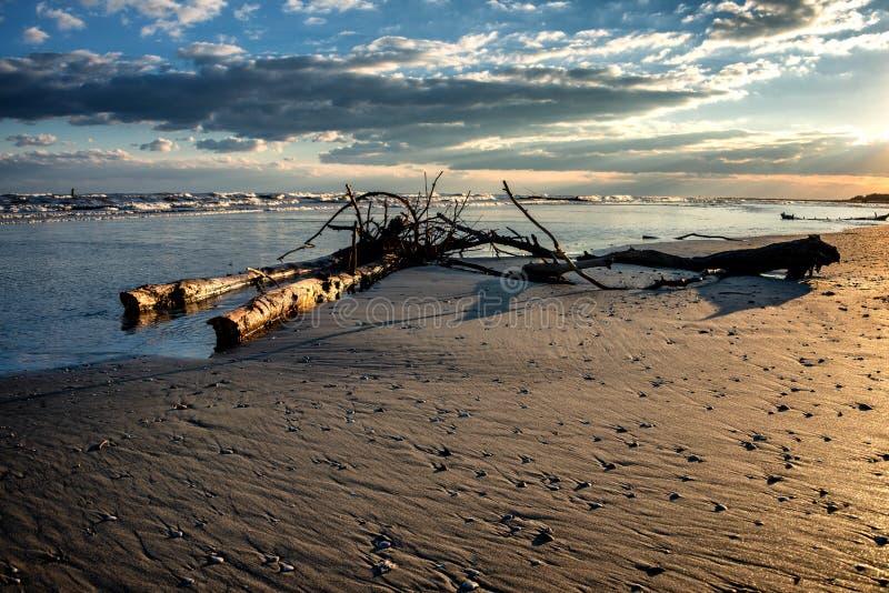 Vrakgods och vrakgods på kust i Italien royaltyfri fotografi