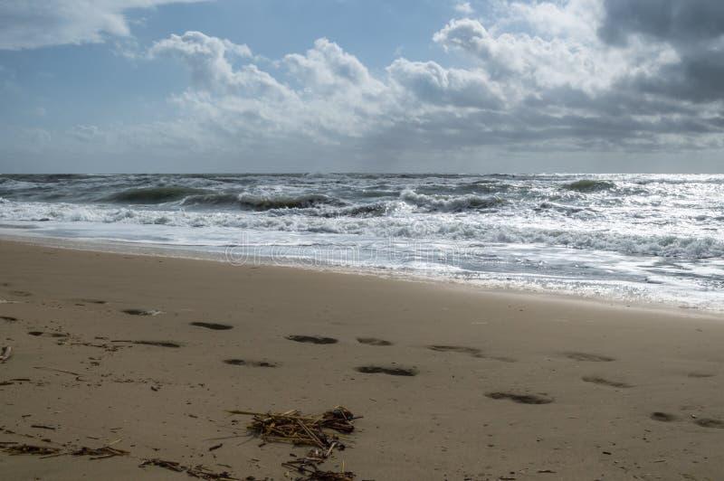 Vrakgods på stranden på en stormig dag royaltyfria bilder