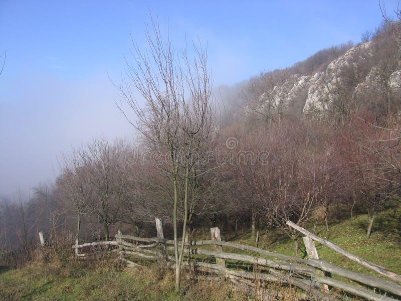 Vratna Prerasts在塞尔维亚 免版税库存照片