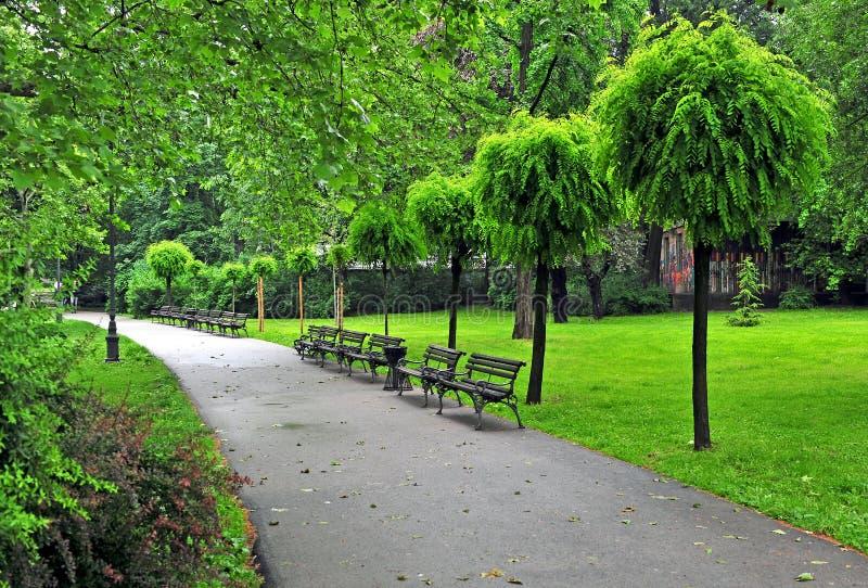 Vreedzaam de zomerpark met een stoep royalty-vrije stock foto