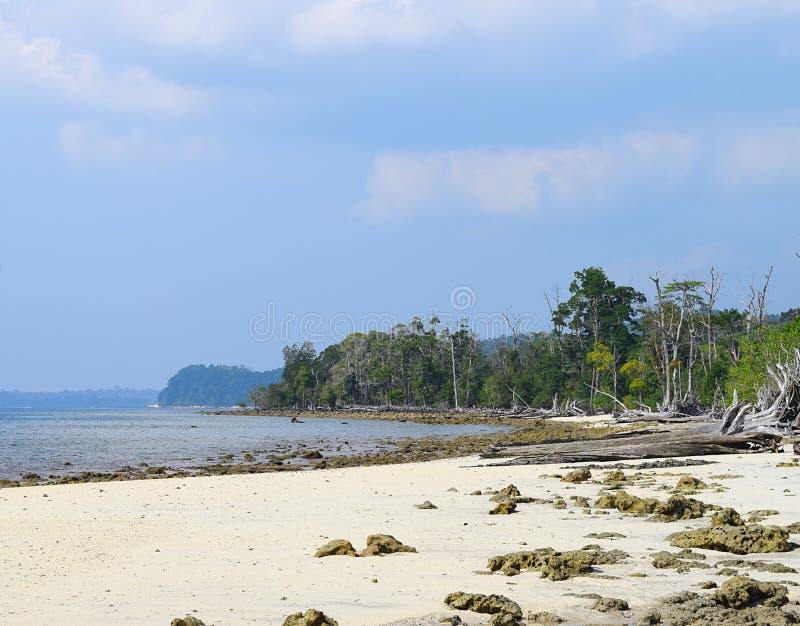 Vreedzaam Rocky Elephant Beach met de Overzeese Bomen van Mohua en Blauwe Hemel, Havelock-Eiland, Andaman Nicobar, India - Natuur royalty-vrije stock fotografie
