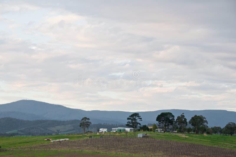 Vreedzame avondscène van Yarra-Valleiplatteland en mountainrange dichtbij Melbourne Australië royalty-vrije stock foto's