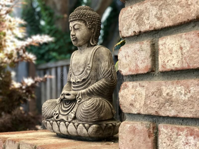 Vreedzame Boedha in meditatie royalty-vrije stock foto