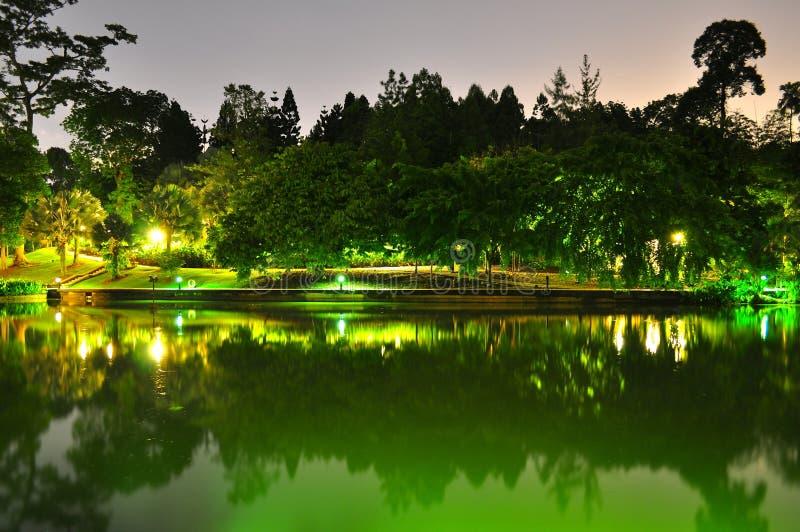 Vreedzame Botanische de Tuin 's nachts vijver van Singapore stock foto's