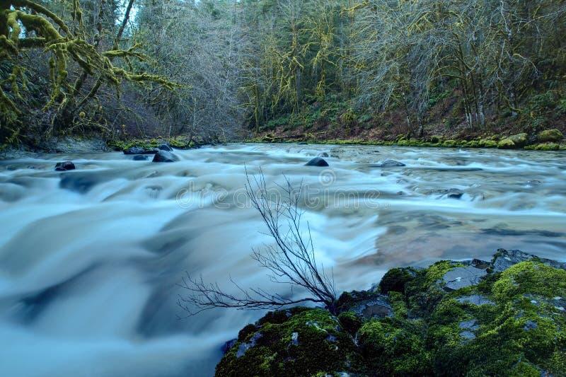 Vreedzame de bergrivier van het Noordwesten stock foto's