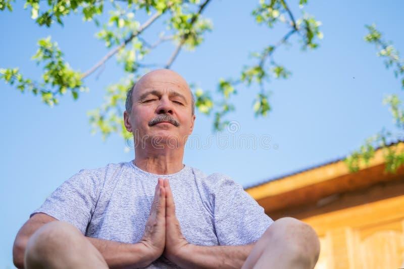 Vreedzame hogere mens die gezette ooutdoor mediteren onder de boom royalty-vrije stock foto