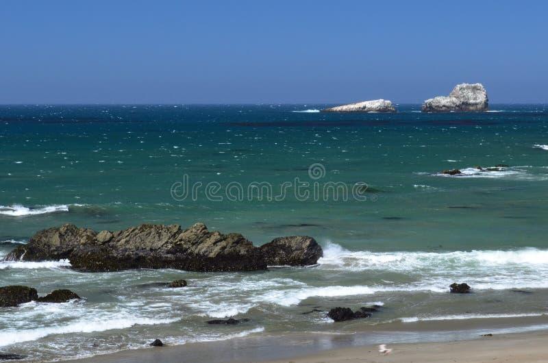 Vreedzame Kust, tussen Morro-Baai en Monterey, Californië, de V.S. stock foto