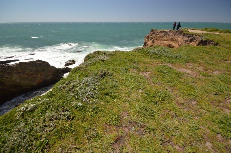Vreedzame kustenindrukken van het Licht van de Puntarena, Californië de V.S. stock foto