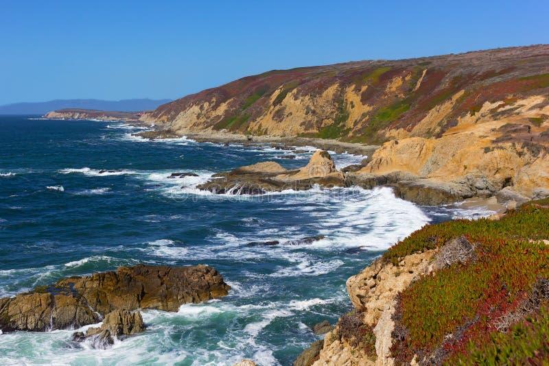Vreedzame kustlijn van Bodega-Baai in Californië, de V.S. royalty-vrije stock afbeeldingen