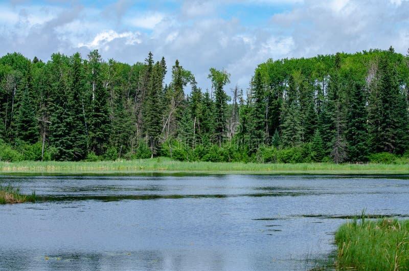 Vreedzame meerscène in Manitoba stock afbeeldingen