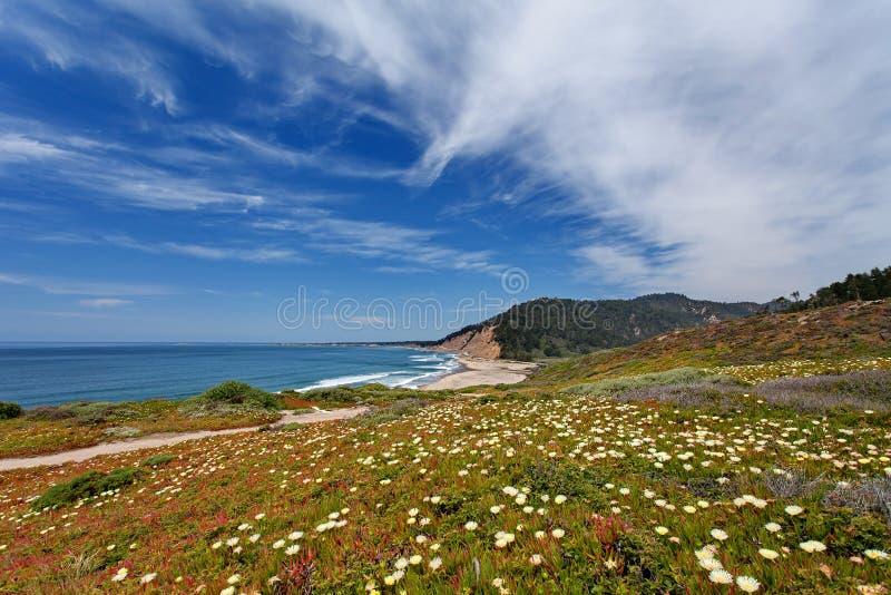 Vreedzame Oceaan - Route 1 van de Staat van Californië (Vreedzame Kustweg), nabijgelegen Monterey Californië, de V.S. royalty-vrije stock foto's