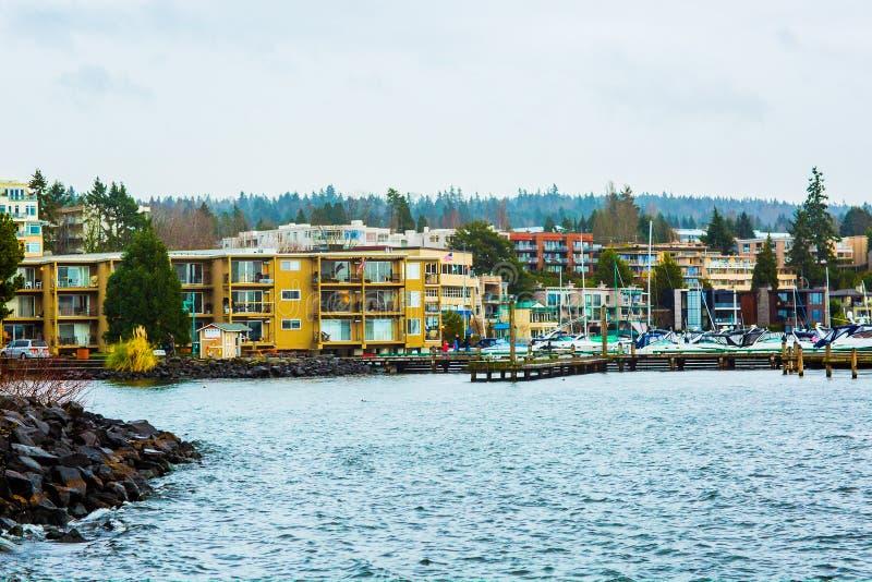 Vreedzame Oceaanmt van Puget Sound Seattle Washington State Pacific Northwest PNW Rainer Mountains Trees Evergreen Trees-Pijnboom stock foto