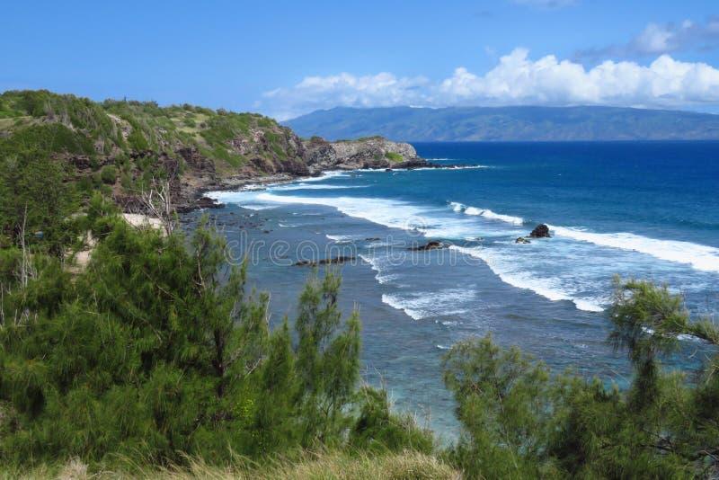 Vreedzame oceaanoever in Maui, Hawaï stock foto's