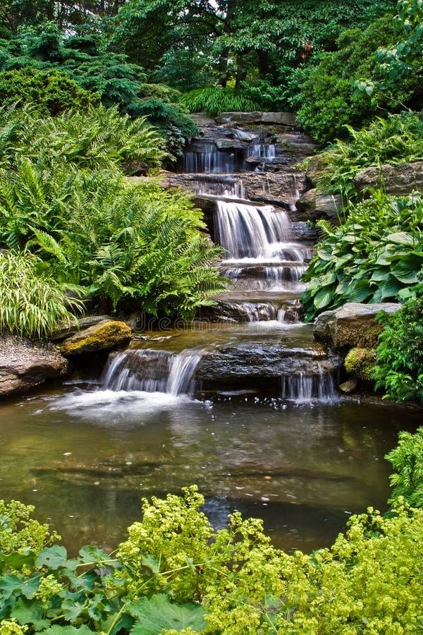 Vreedzame waterval stock afbeeldingen