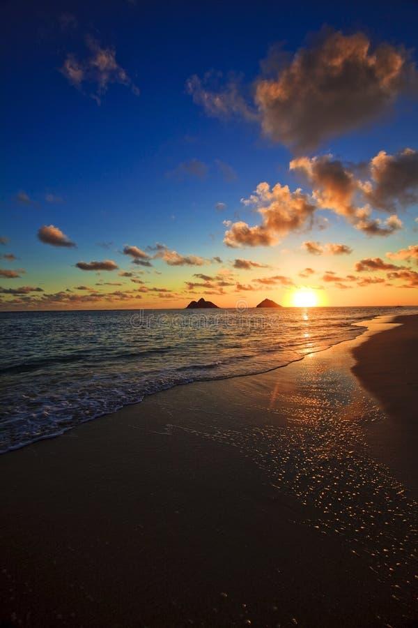 Vreedzame zonsopgang bij lanikaistrand, Hawaï royalty-vrije stock afbeelding