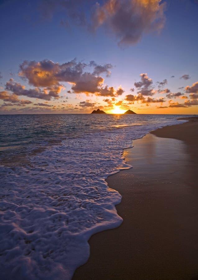 Vreedzame zonsopgang bij lanikaistrand, Hawaï royalty-vrije stock foto's