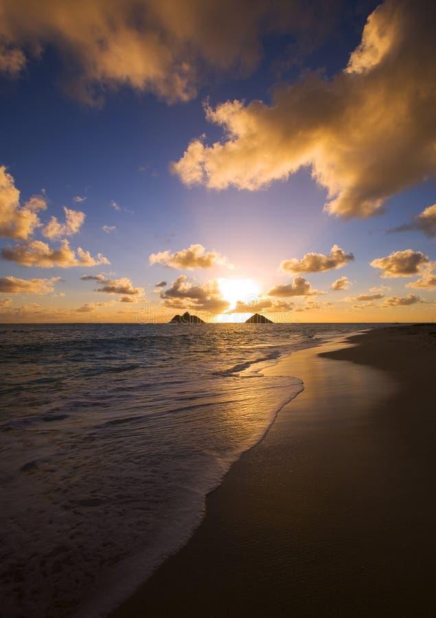 Vreedzame zonsopgang bij lanikaistrand, Hawaï stock foto