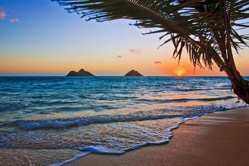 Vreedzame zonsopgang bij strand Lanikai in Hawaï royalty-vrije stock foto