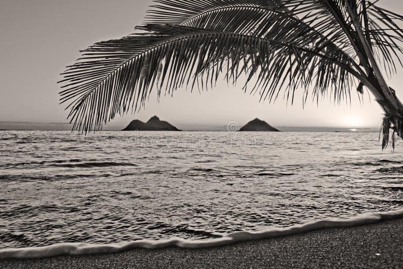 Vreedzame zonsopgang bij strand Lanikai in Hawaï royalty-vrije stock foto's