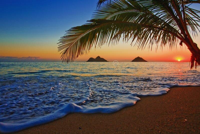 Vreedzame zonsopgang bij strand Lanikai in Hawaï stock afbeeldingen
