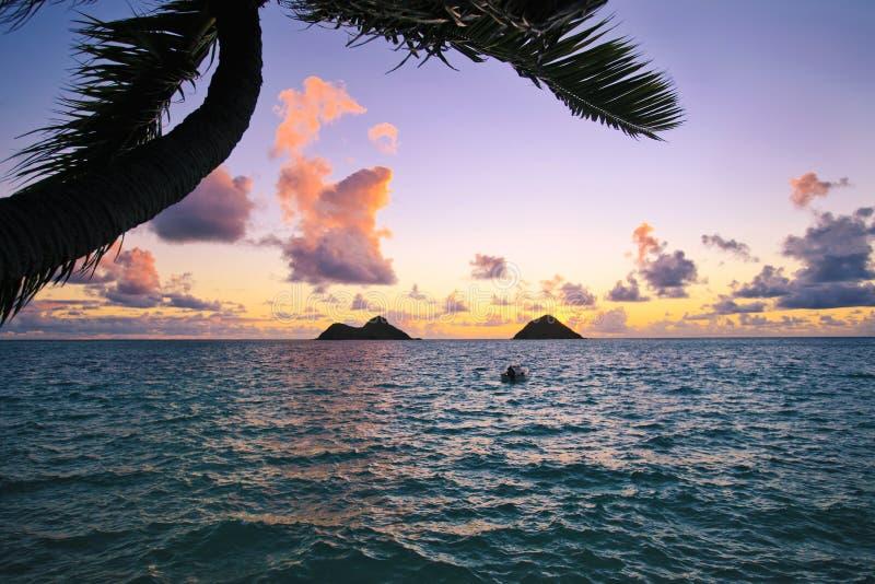 Vreedzame zonsopgang in Hawaï royalty-vrije stock fotografie