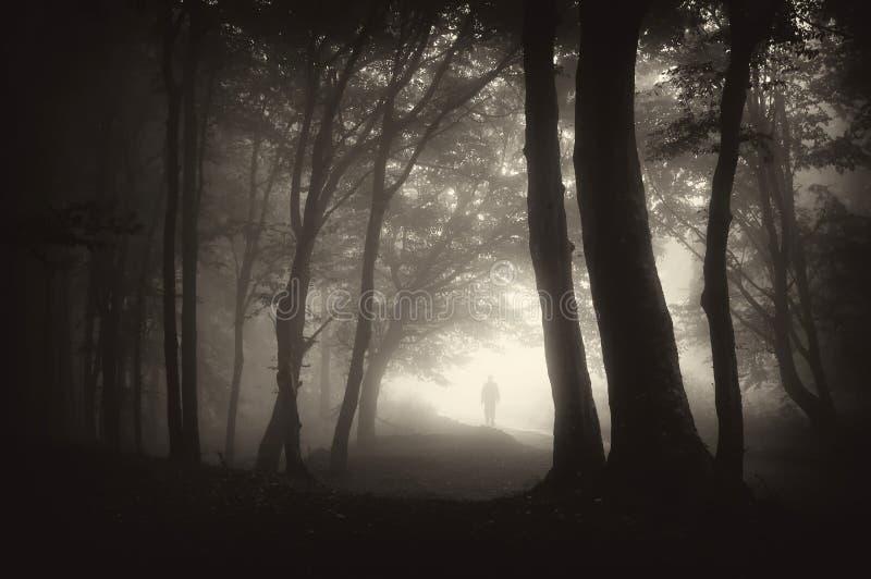 Vreemde mensenpersoon die in een donker bos loopt royalty-vrije stock foto's