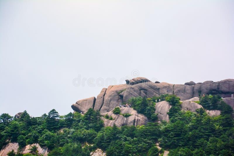 Vreemde steen zoals Karper en schildpad in Onderstel Huangshan van China (Bergketen) stock foto
