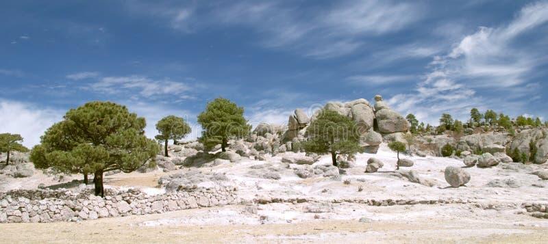 Vreemde stenen en bomen royalty-vrije stock afbeeldingen