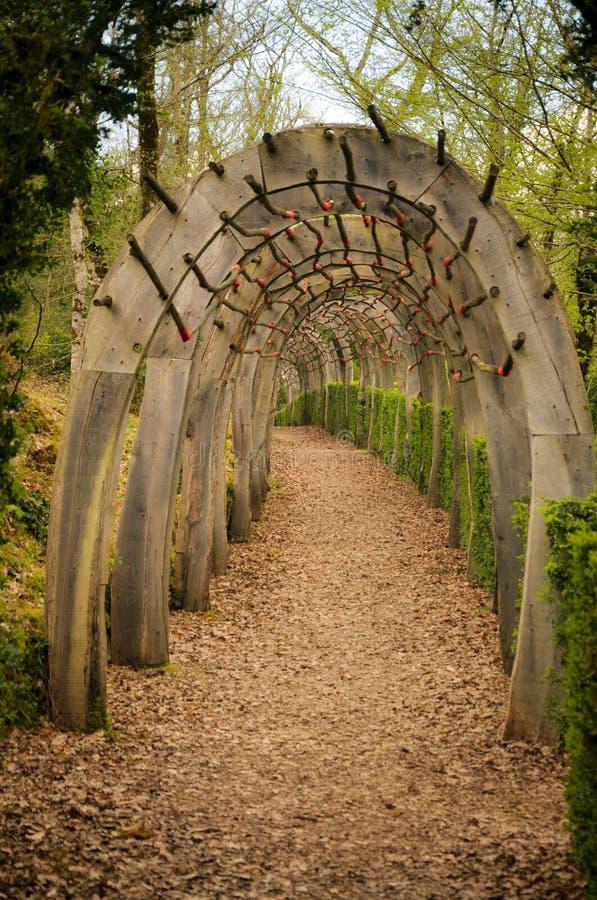 Vreemde Tunnel in de Tuin van Marqueyssac royalty-vrije stock fotografie