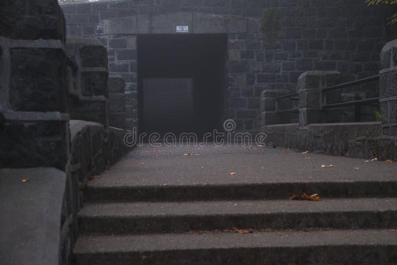 Vreemde tunnel op een nevelige koude mistochtend royalty-vrije stock fotografie