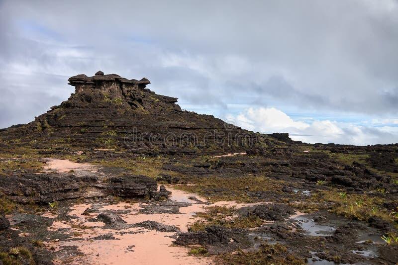 Vreemdeling die als rotsachtig terrein van onderstel Roraima kijken royalty-vrije stock foto's
