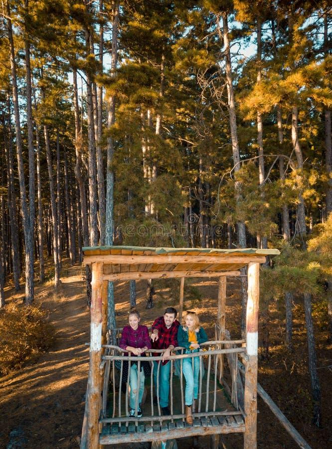Vrienden bij het brandvooruitzicht in het bos royalty-vrije stock afbeeldingen