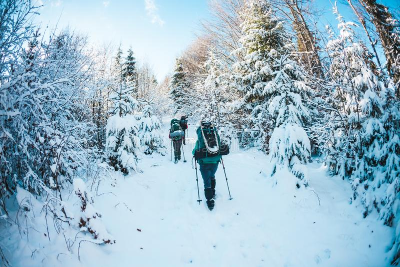 Vrienden in de de wintertrekking in de bergen stock afbeelding