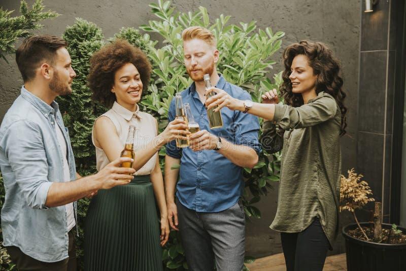 Vrienden die de openluchttoost van de tuinpartij met alcoholische cider D hebben stock afbeeldingen
