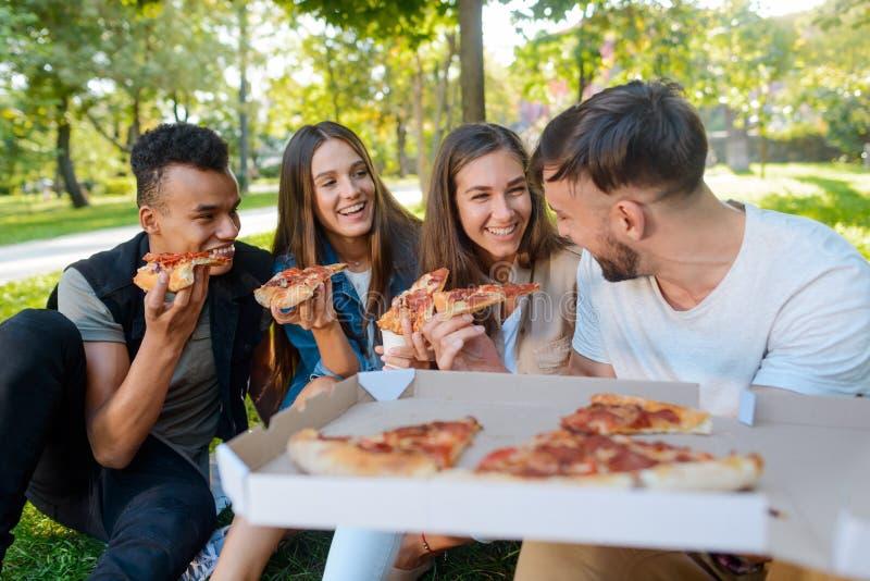 Vrienden die een pizzapicknick hebben stock afbeeldingen